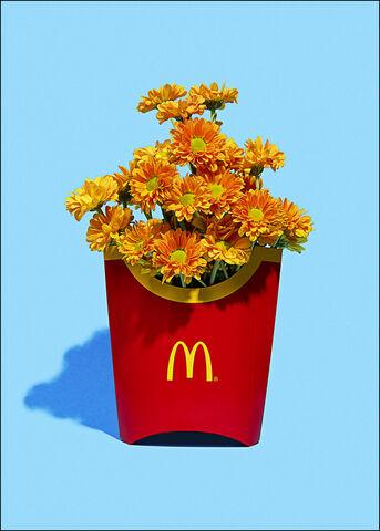 Super Mercat - Flower fries