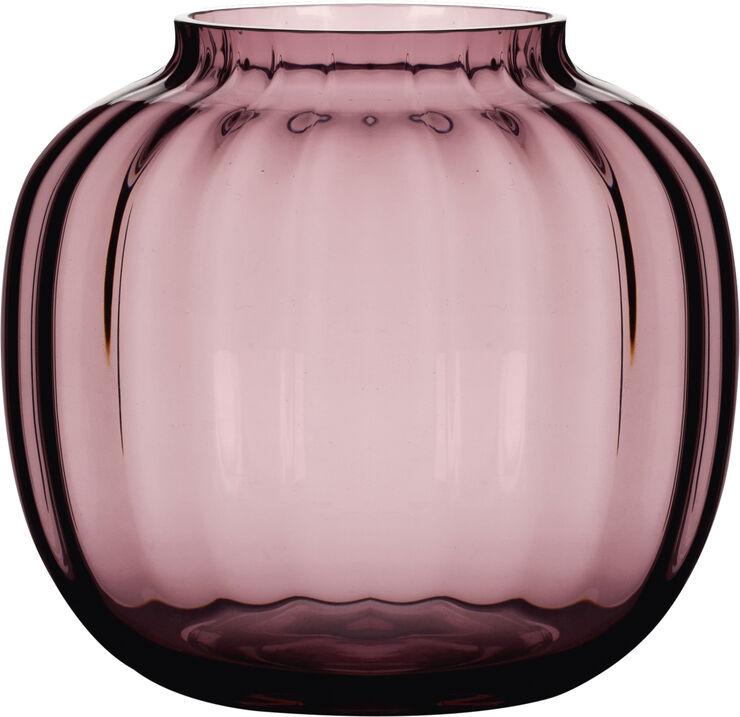Primula Vase blomme Ø14,5