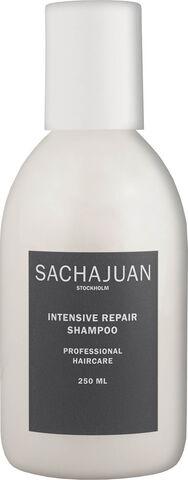 Shampoo Intensive Repair 250 ml.