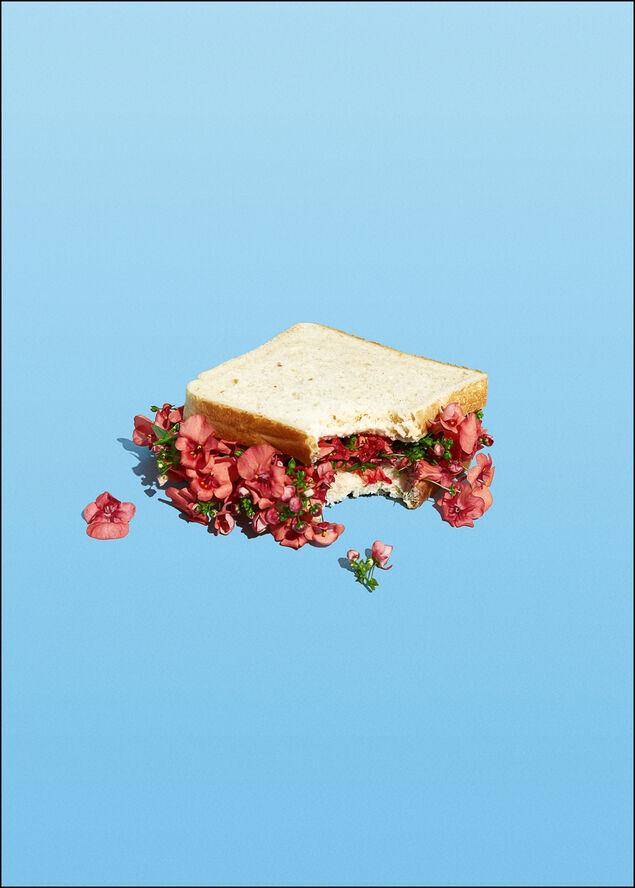 Super Mercat - Flower sandwich