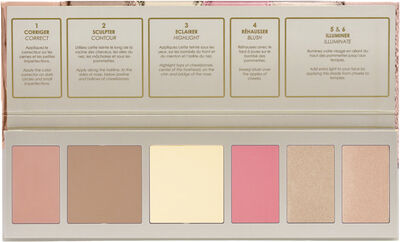 FLAWLESS FACE PALETTE-19 02