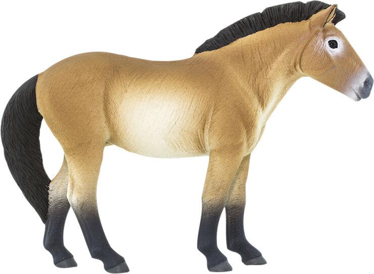 Przewalski-hest