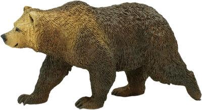 Gråbjørn