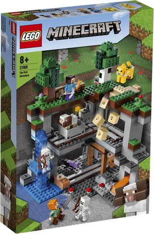 tbd-Minecraft-6-2021