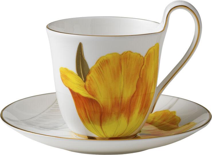 Flora højhanks- og underkop tulipan