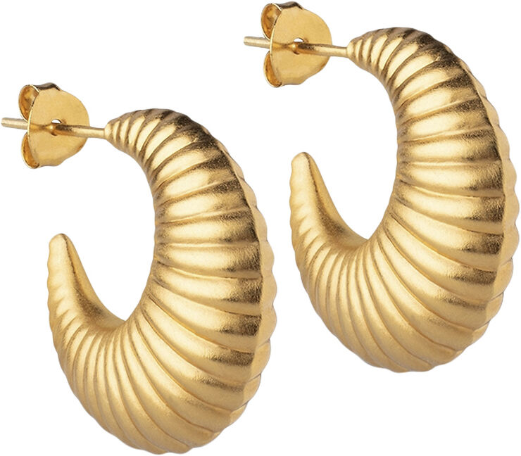 Hoops, Cornelia Large