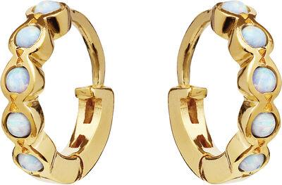 Kanya Earrings Blue Opal