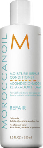 Moisture Repair Conditioner, 250 ml.