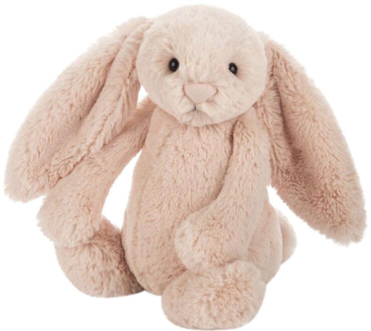 Bashful kanin