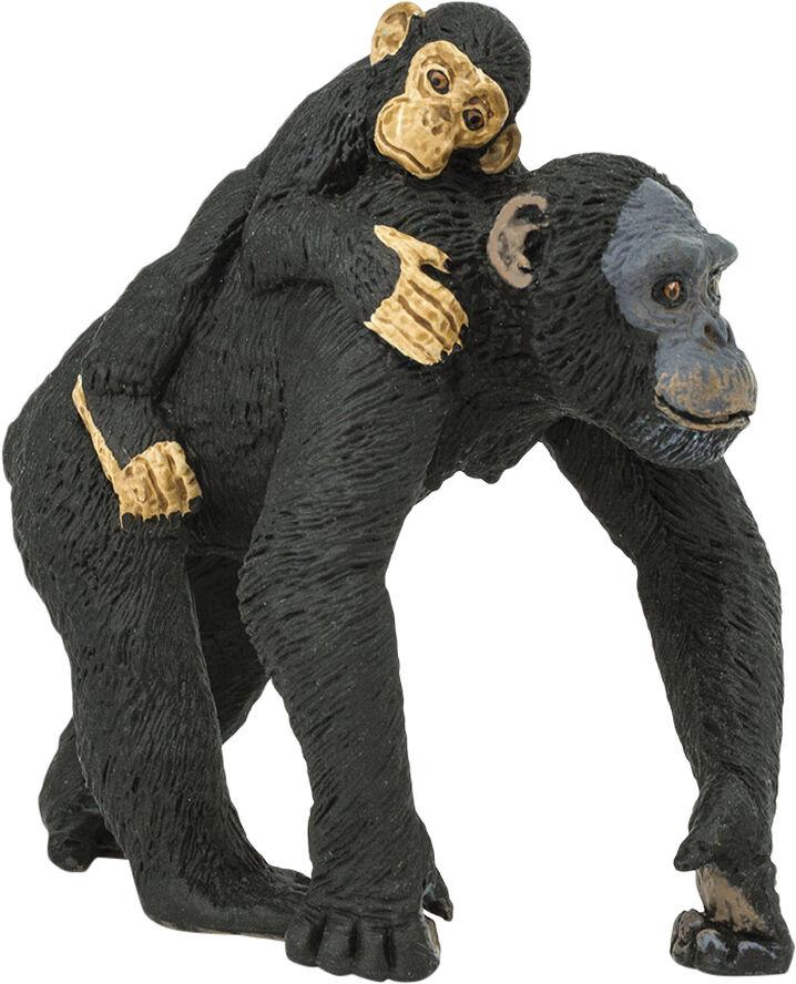 Chimpanse med unge