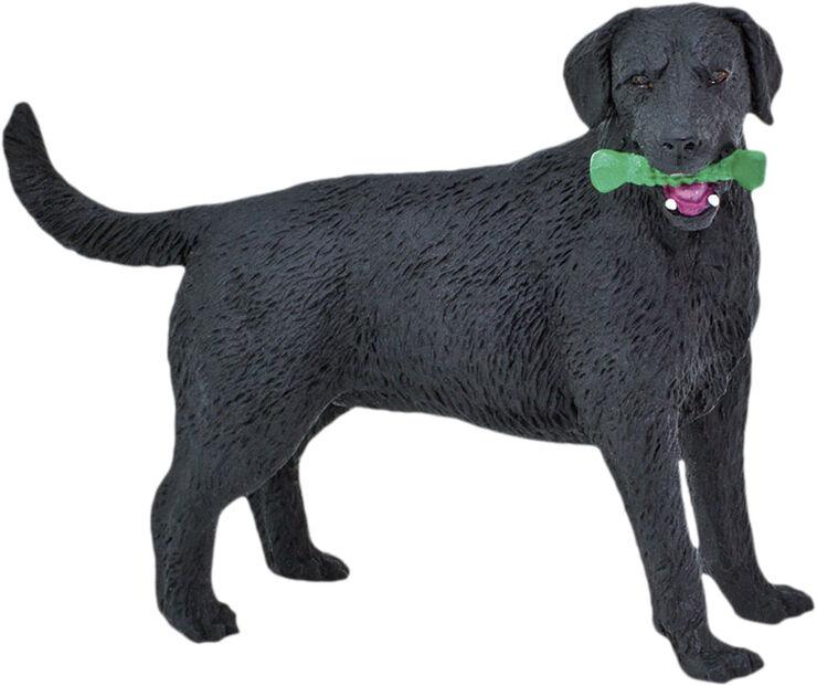 Sort Labrador