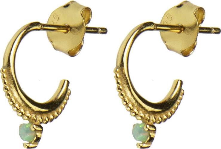Daria earrings