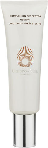 Complexion Perfector SPF 20 Medium